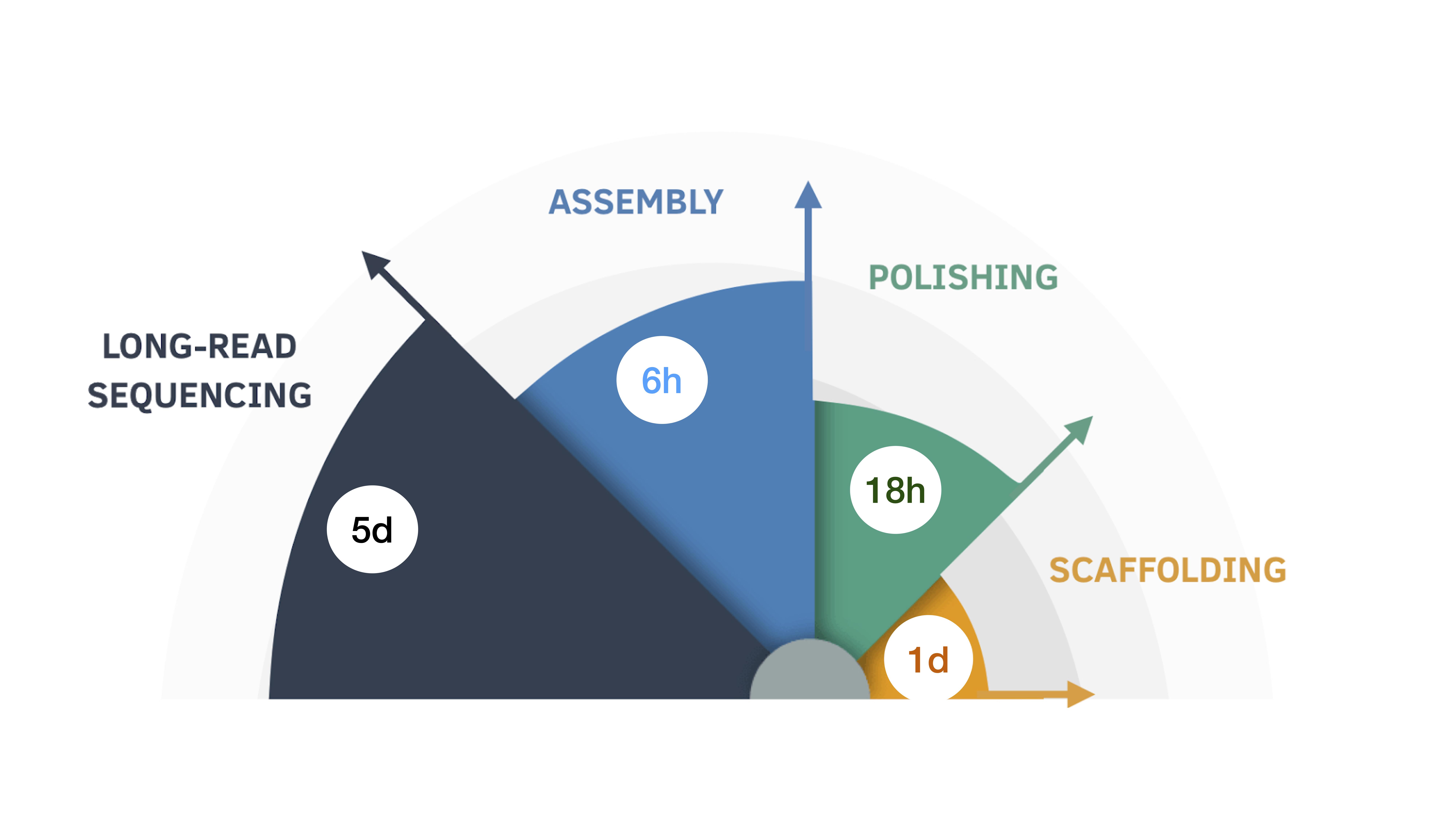Nine-Day Assembly