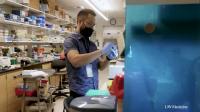 COVID-19 UW Medicine Replicating RNA Vaccine