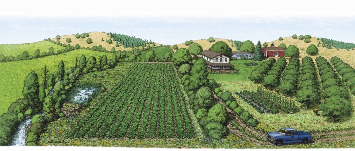 Diversified Farmland