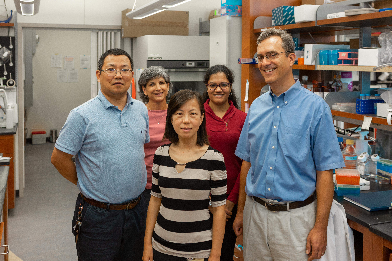 Kühn Lab Research Group