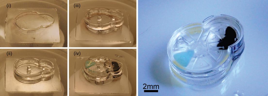 Implantable Microrobots