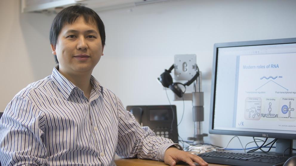 Zhengqing Ouyang, Ph.D., Jackson Laboratory