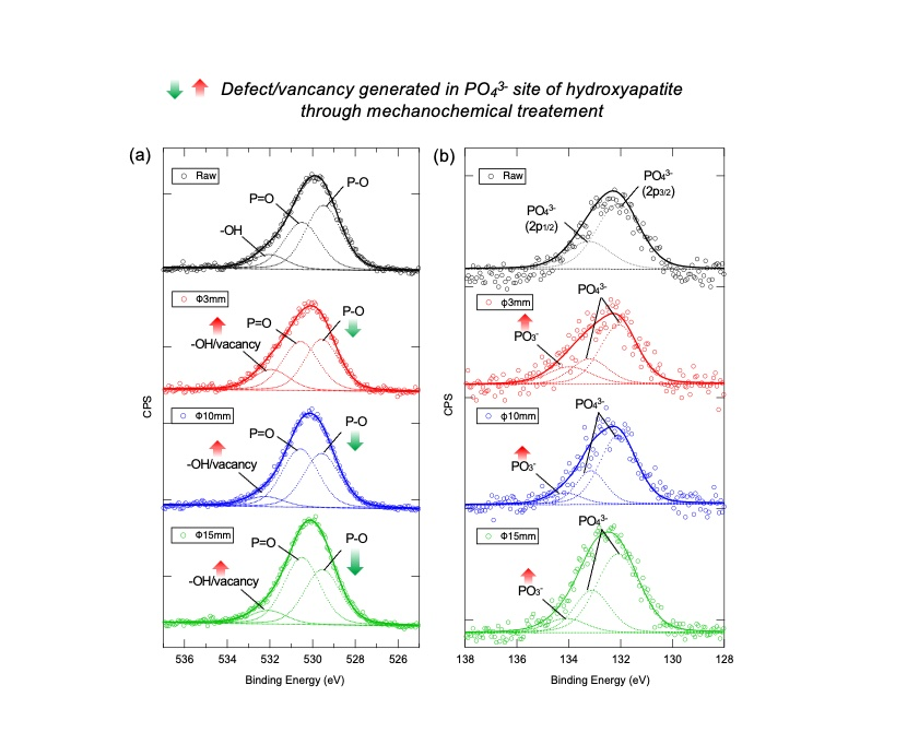 Fig. 2  X-ray photoelectron spectra of (a) O 1s and (b) P 2p orbitals of raw and mechanochemically treated HAps