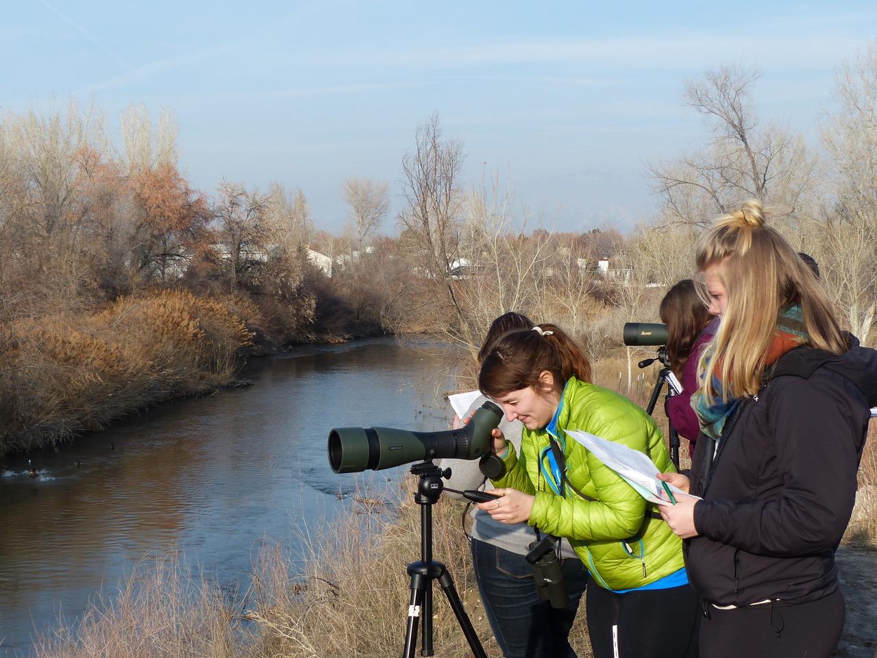 Birding on the Jordan River Parkway