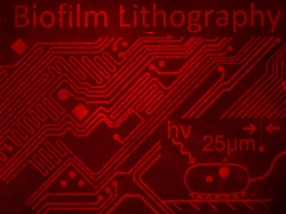 Biofilm Lithography