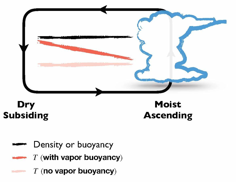Vapor Buoyancy Graphic