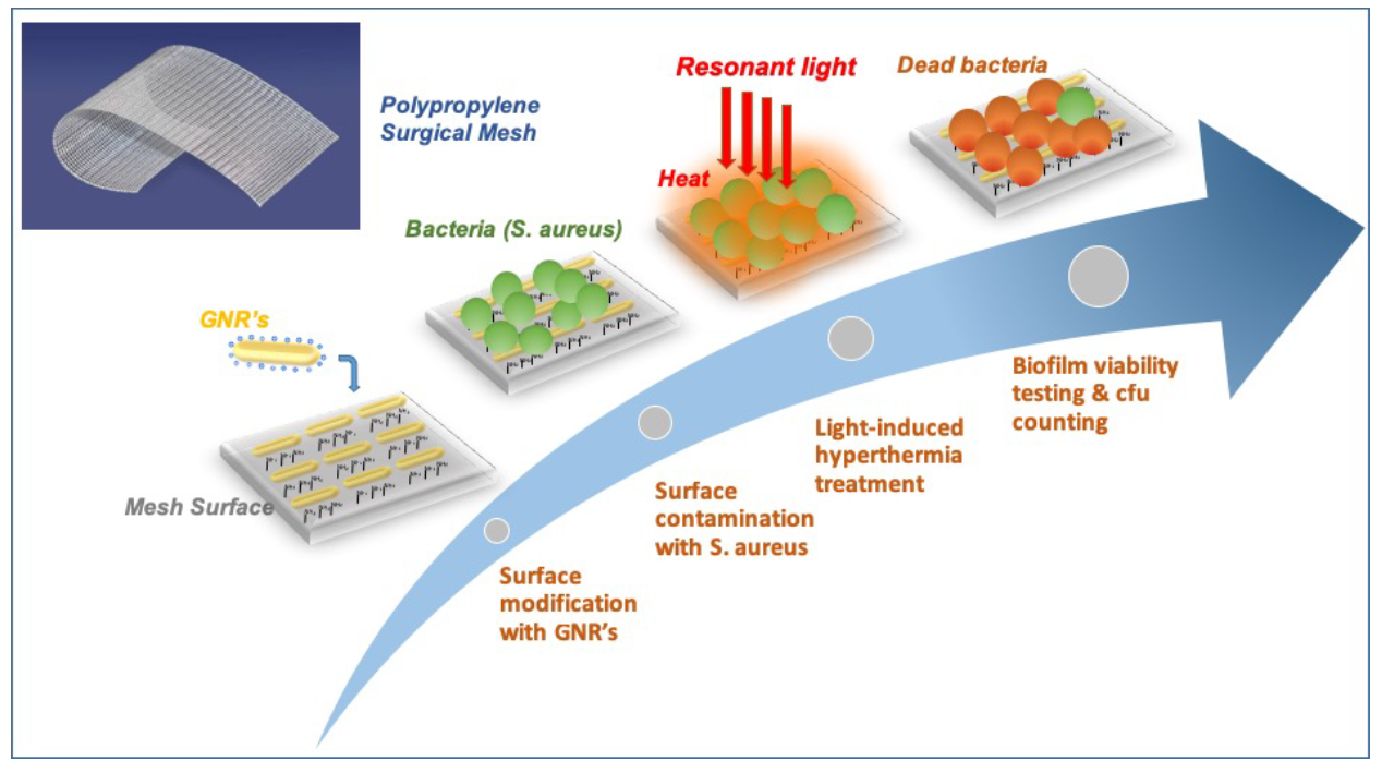 Schematic View of Plasmon-Enabled Biofilm Prevention on Surgical Meshes
