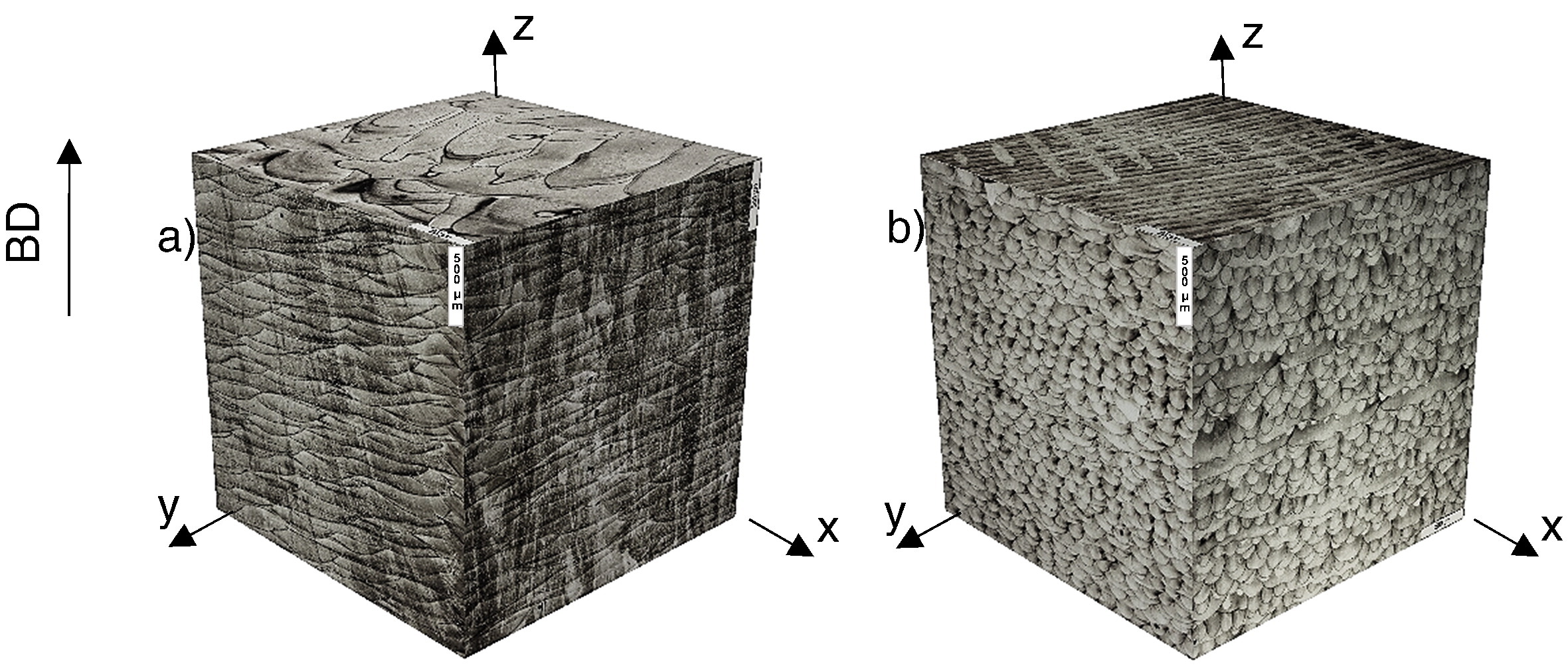Researchers Obtained a Gradient Microstructure of the Material and Created a Product, Combining Prop