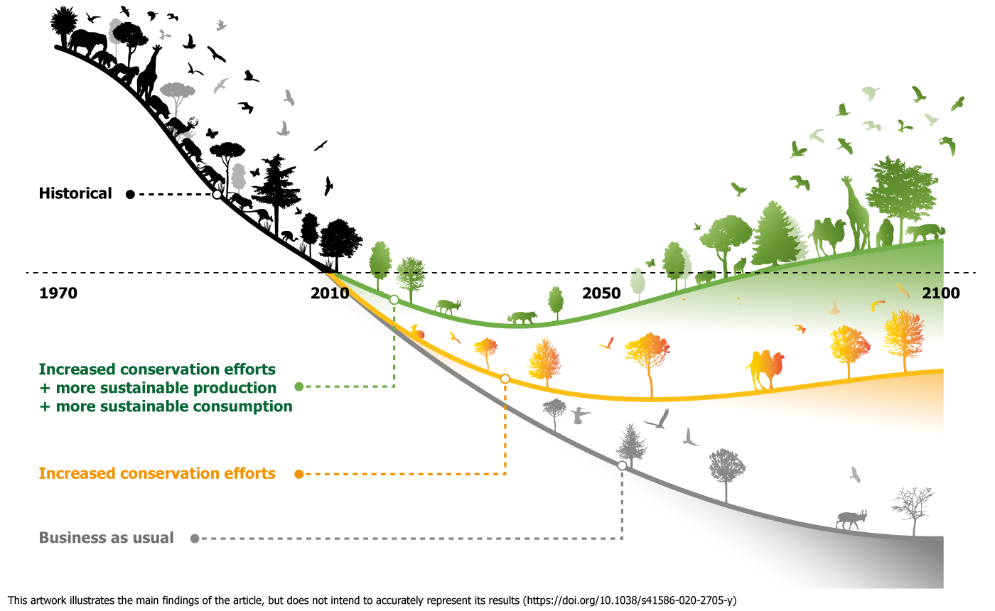 Bending the Curve of Biodiversity Loss