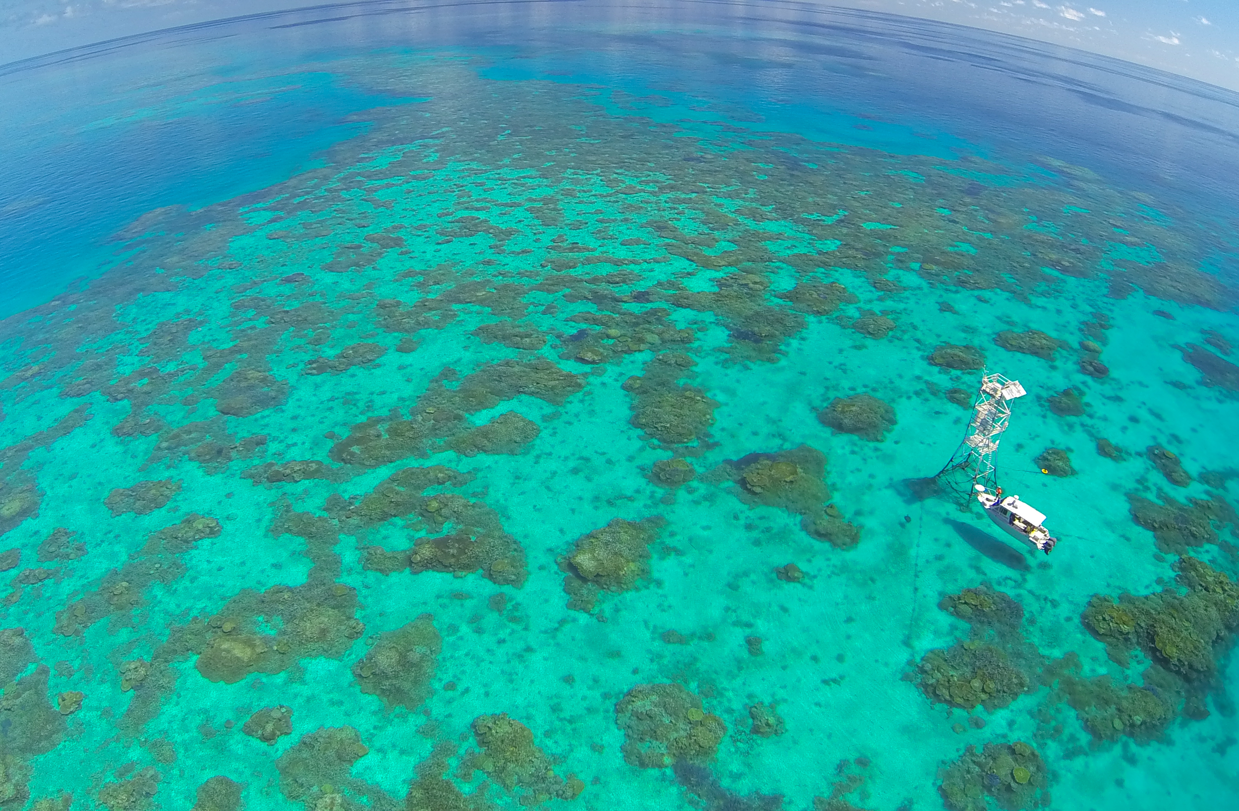 Monitoring Reef Condition on the Great Barrier Reef