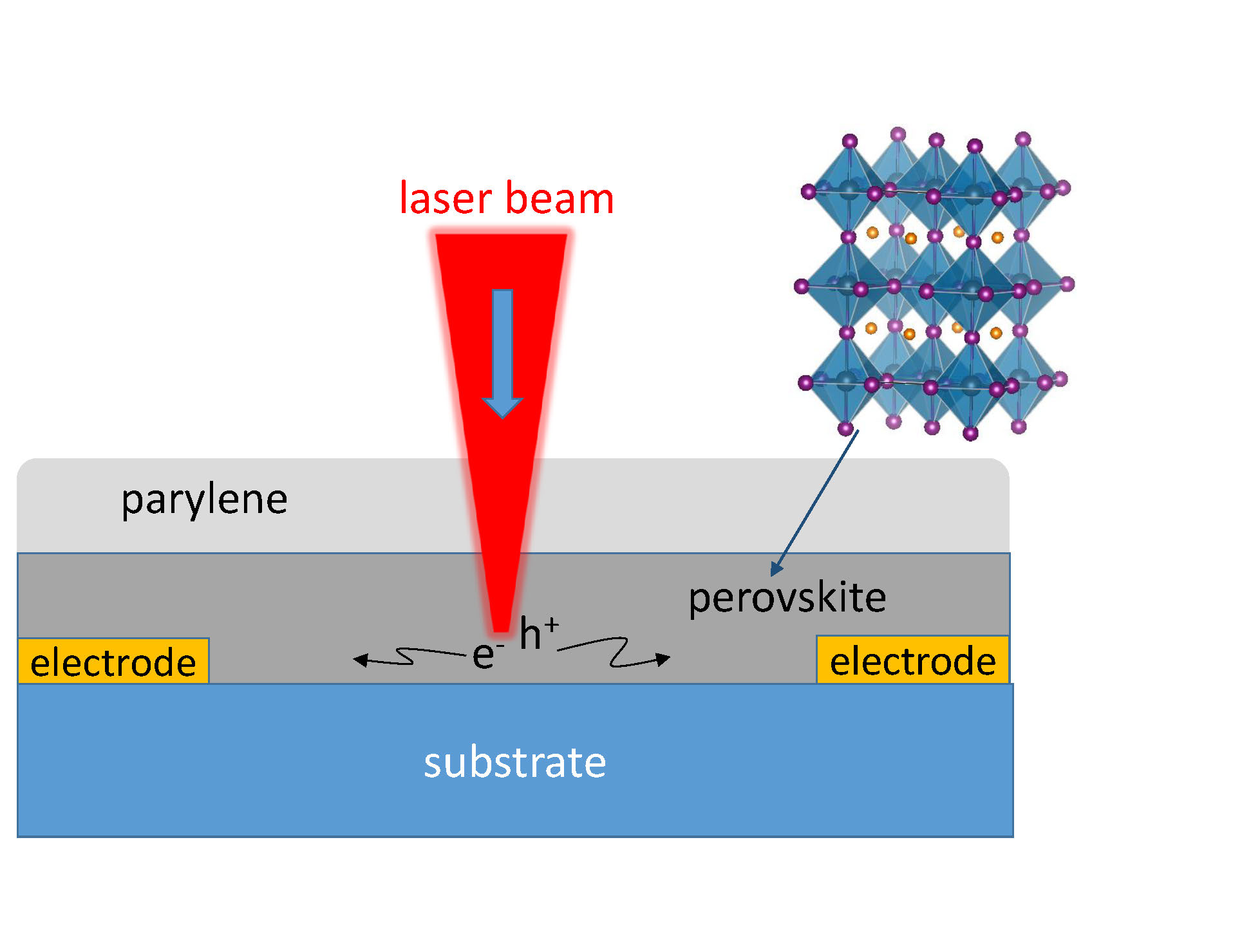 Scanning Photocurrent Imaging Microscopy Provided Direct Measurements of Perovskite Properties