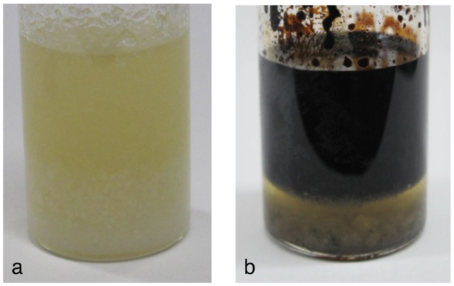 Oil and Water Produced from Interstellar Organic Matter Analog